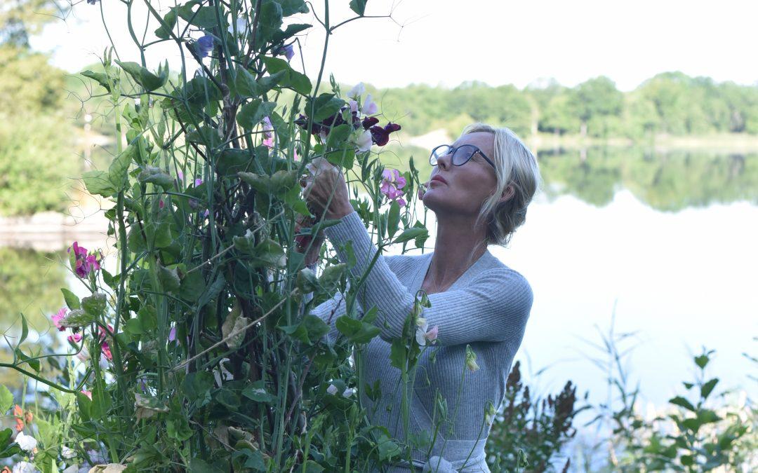 Glöm inte att fortsätta gödsla och vattna era luktärter